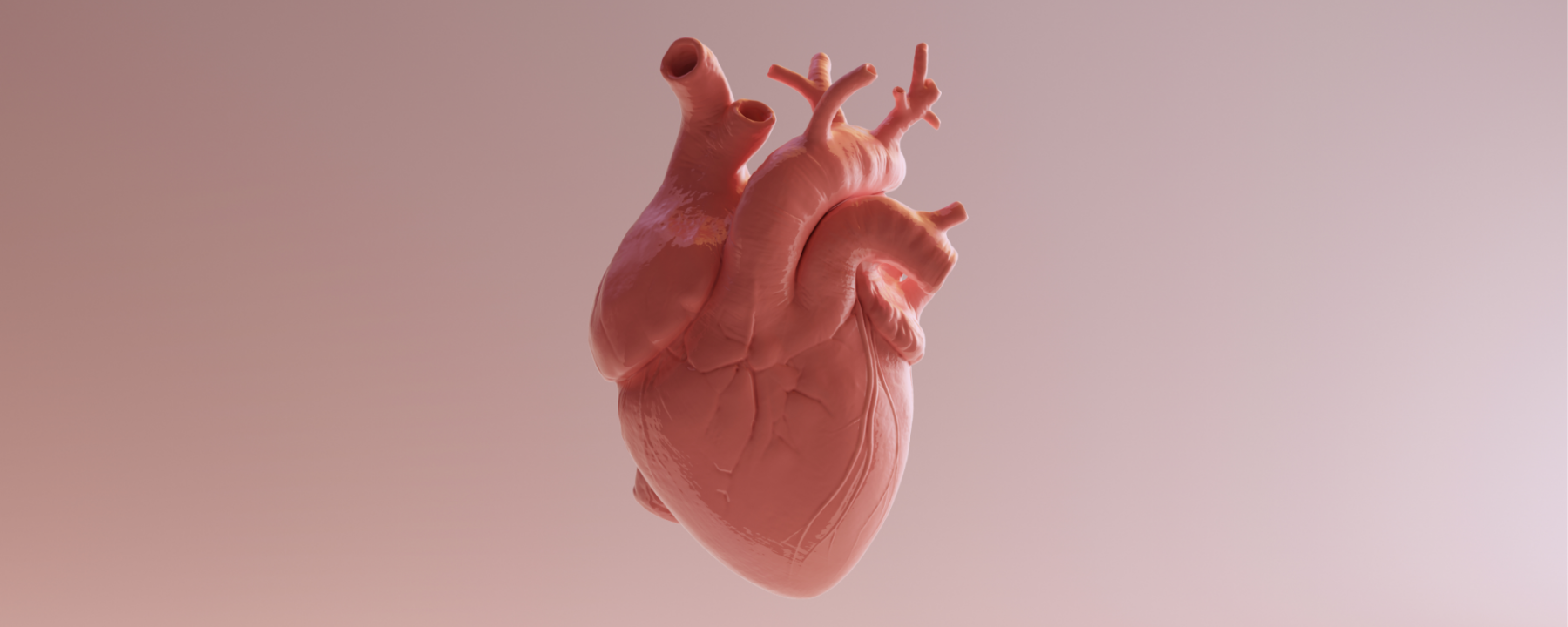 Autopsies Show Varied Forms of Heart Damage in COVID-19 Patients