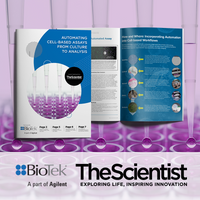 Automating Cell-based Assays from Culture to Analysis