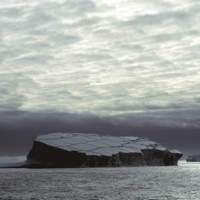 How Ice Shelf Loss Will Change the Antarctic Ecosystem