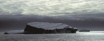 How Ice Shelf Loss Will Change the Antarctic Ecosystem
