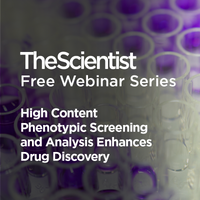 High Content Phenotypic Screening and Analysis Enhances Drug Discovery