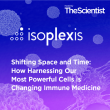 Shifting Space and Time: How Harnessing Our Most Powerful Cells is Changing Immune Medicine