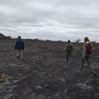 Argentinian Field Site Devastated by Fire