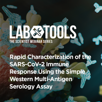 Rapid Characterization of the SARS-CoV-2 Immune Response Using the Simple Western Multi-Antigen Serology Assay