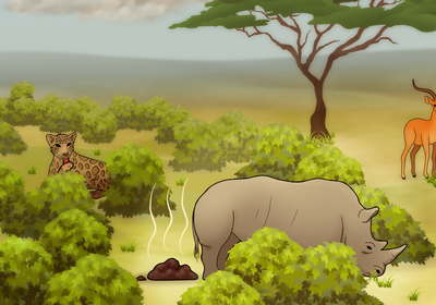 Infographic: Herbivore Dung Nutrients Vary Across the Savanna