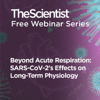 Beyond Acute Respiration: SARS-CoV-2's Effects on Long-Term Physiology