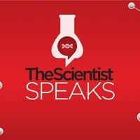 <em>The Scientist</em> Speaks Podcast - Episode 11