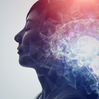 Opinion: The Biological Function of Dreams