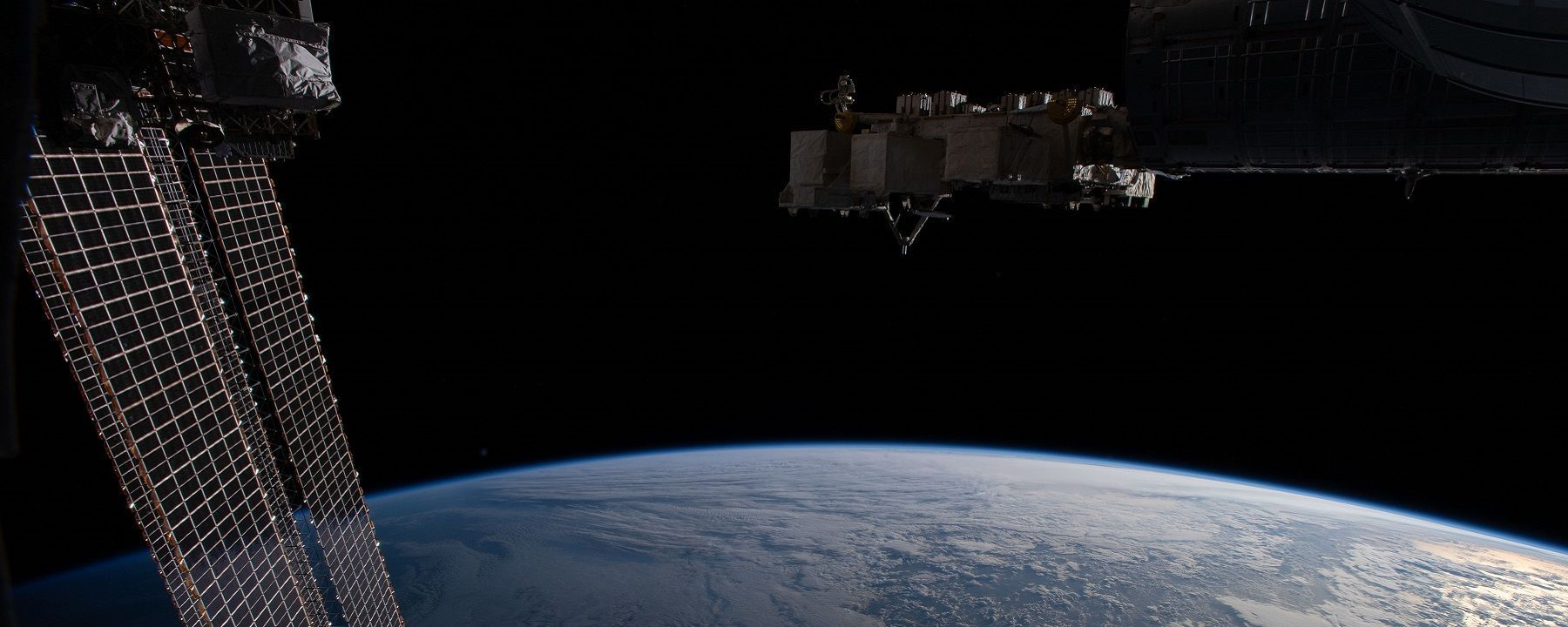 Q&A: How Animals Change in Space