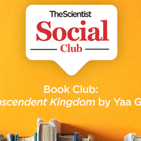 <em>Transcendent Kingdom</em> TS Book Club Discussion