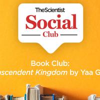 <em>Transcendent Kingdom</em> TS Book Club Discussion
