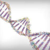 鉴定与严重Covid-19感染有关的关键基因