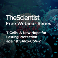 T Cells: A New Hope for Lasting Protection against SARS-CoV-2