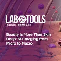 Beauty Is More Than Skin Deep: 3D Imaging from Micro to Macro