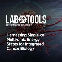 Harnessing Single-Cell Multi-Omic Energy States for Integrated Cancer Biology