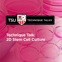 Technique Talk: 2D Stem Cell Culture