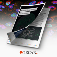 Improving Cell-Based Research with Real-Time Assays
