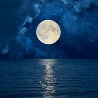 Menstrual Cycles Intermittently Sync with Moon Cycles: Study