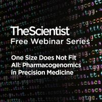 One Size Does Not Fit All: Pharmacogenomics in Precision Medicine