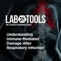 Understanding Immune-Mediated Damage After Respiratory Infection