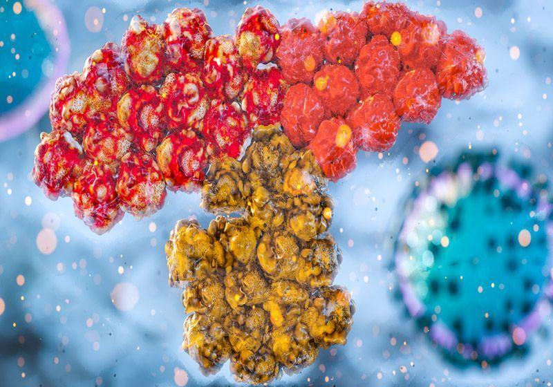 Regeneron Cocktail Stumbles Against SARS-CoV-2 Variant in Vitro