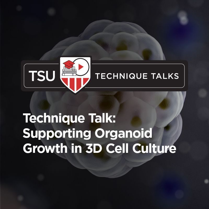 Technique Talk: Supporting Organoid Growth in 3D Cell Culture