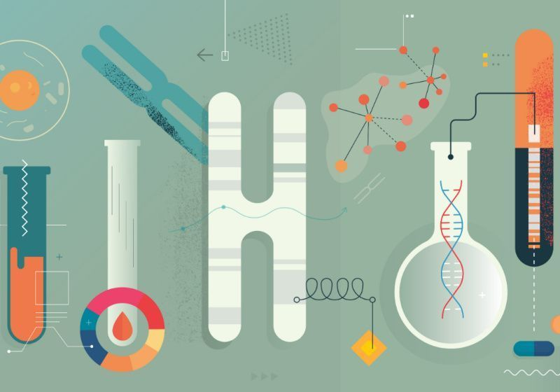 Researchers Develop Standards for Reporting Polygenic Risk Scores