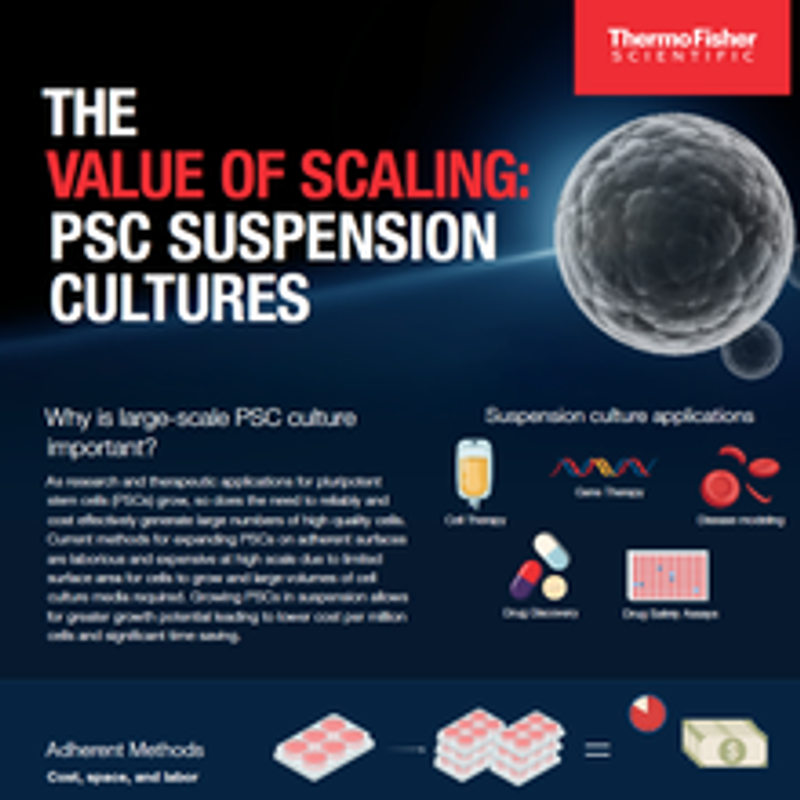 Infographic: The Value of Scaling: PSC Suspension Cultures