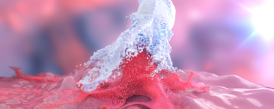 CAR Macrophages Tackle Challenges in Solid Cancer Treatment