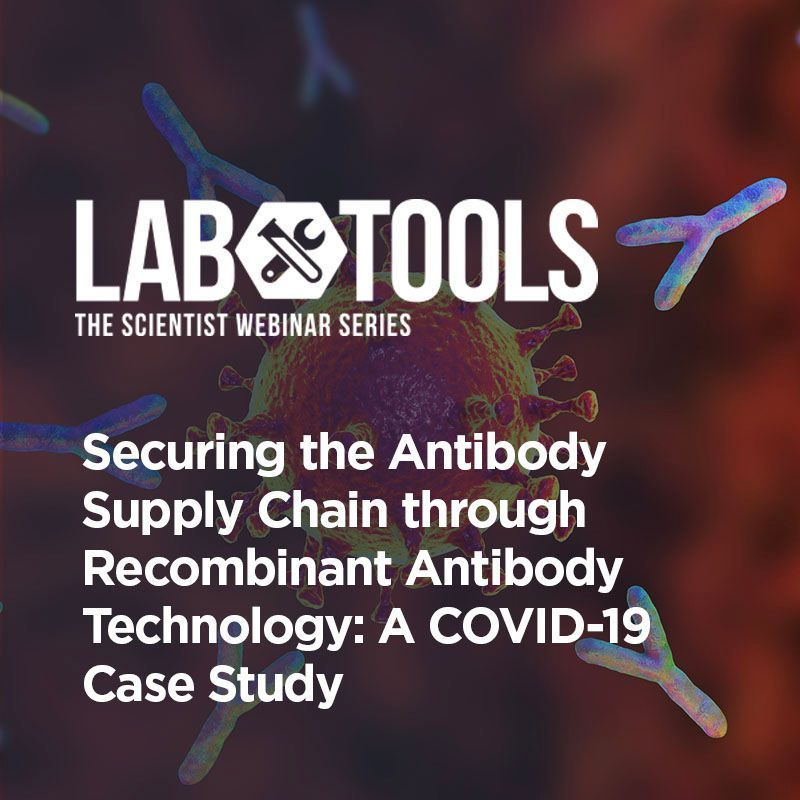 Securing the Antibody Supply Chain through Recombinant Antibody Technology: A COVID-19 Case Study