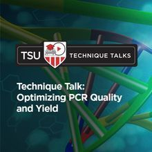 Technique Talk: Optimizing PCR Quality and Yield