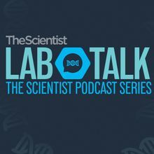 LabTalk Podcast - Predicting the Immune Response with Single-Cell Analysis: Autoimmunity, Vaccination, and COVID-19