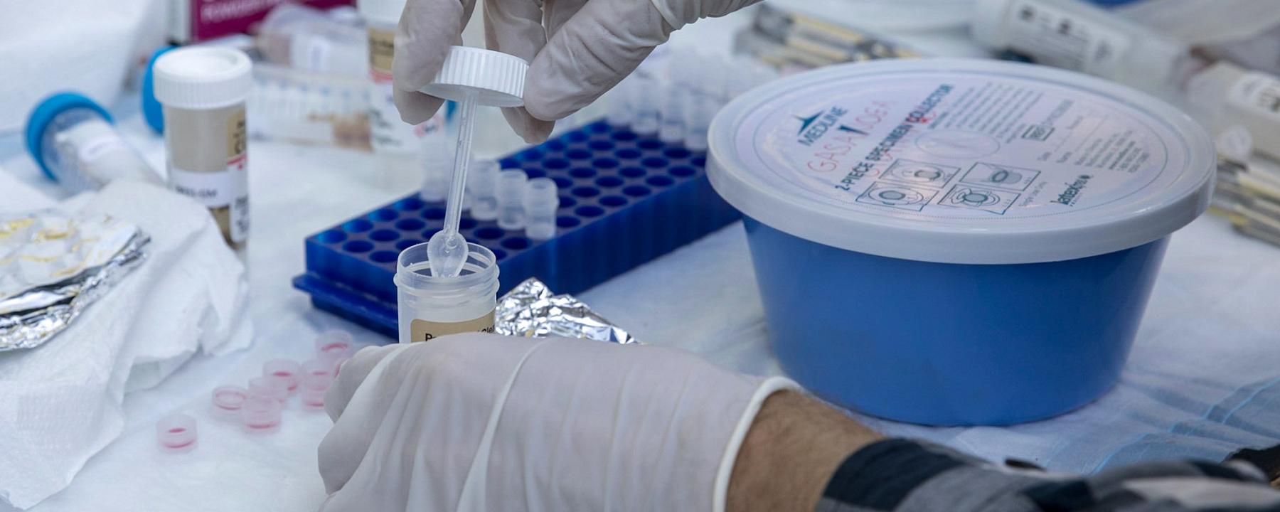 Gene Exchange Among Gut Bacteria Is Linked to Industrialization