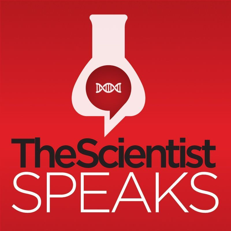 <em>The Scientist&nbsp;</em>Speaks Ep. 16 - At the Breaking Point: Mitochondrial Deletions and the Brain