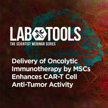 Delivery of Oncolytic Immunotherapy by MSCs Enhances CAR-T Cell Anti-Tumor Activity