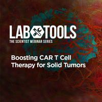 Boosting CAR T Cell Therapy for Solid Tumors
