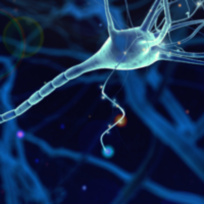 Gaining Biological Insights into Brain Development Using Single Cell Technologies