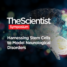 Harnessing Stem Cells to Model Neurological Disorders