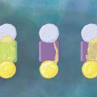 信息图:研究单细胞是否能学习