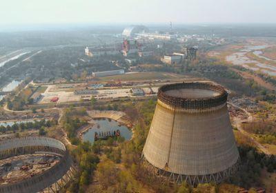 No Transgenerational Effects of Chernobyl Radiation Found