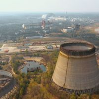 No Transgenerational Effects of Chernobyl Radiation Found