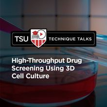 Technique Talk: High-Throughput Drug Screening Using 3D Cell Culture
