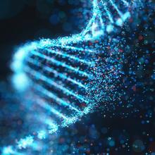 6月11日-技术讲座:PCR质量和产量优化
