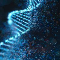 June 11, 2021 - Technique Talk: Optimizing PCR Quality and Yield