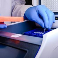 Coronavirus Mutations Could Muddle COVID-19 PCR Tests
