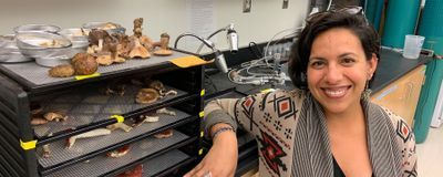 Adriana L. Romero-Olivares Tracks Fungi's Response to Climate Change