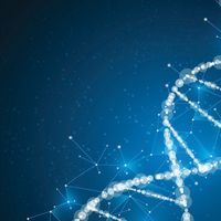 Custom DNA Constructs Accelerate Therapeutic Research