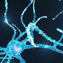Central Nervous System Modeling with iPSC-Derived Cells