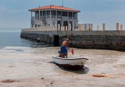 Why Turkey's Sea of Marmara Is Full of Marine Snot