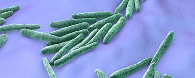Tuberculosis: The Forgotten Pandemic